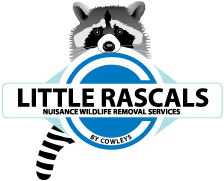 Little Rascals by Cowleys Serving New Jersey